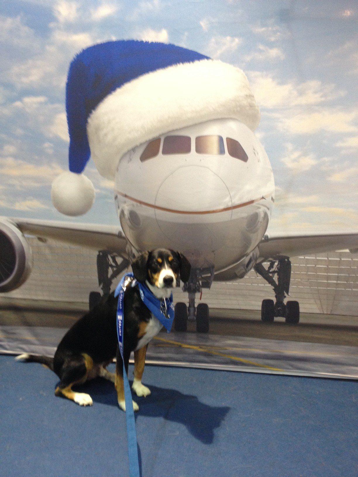 airport visit